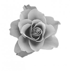rose2a_black_and_white